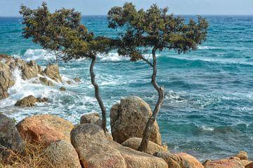 Oostkust Sardinië van Joachim G. Pinkawa