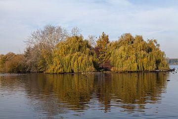 Reflecties in de herfst bij de Kralingse plas von Nel Diepstraten