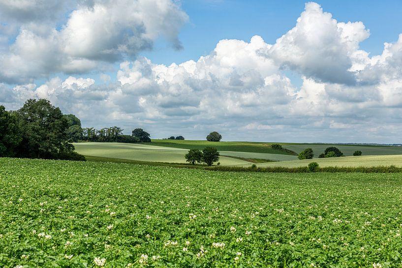Glooiende heuvels in Zuid-Limburg van John Kreukniet