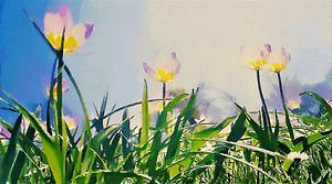 Lichte Tulpen onder de Zon en Blauwe Hemel boven Groene Grassprieten - Schilderij