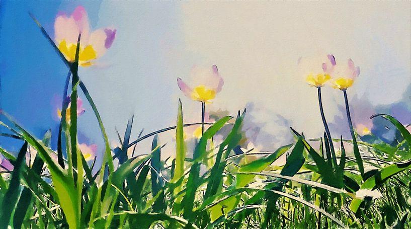 Lichte Tulpen onder de Zon en Blauwe Hemel boven Groene Grassprieten - Schilderij van Schildersatelier van der Ven
