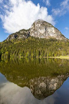 Réflexion avec la montagne sur Teresa Bauer