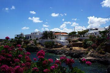 Mediterraans dorpje von Miranda van Hulst