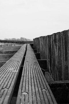 Water planken van Wouter van Rheenen