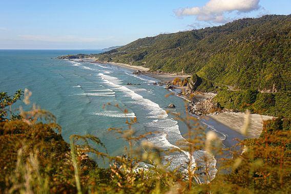 De westkust van Nieuw - Zeeland