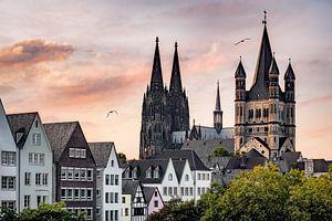Stadsgezicht Keulen met de Dom en de Grote St Martinus van