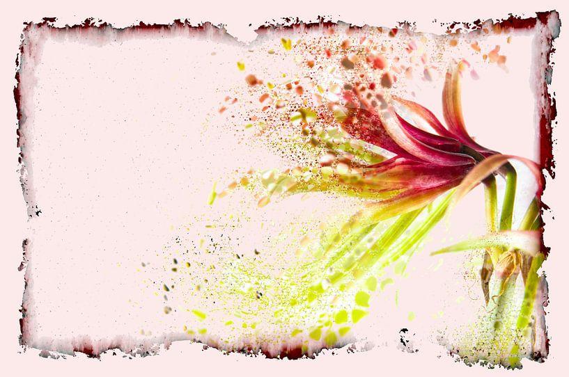 Flower Power #4 van Cristel Brouwer