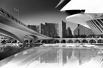 Lignes urbaines, Valencia (noir et blanc)