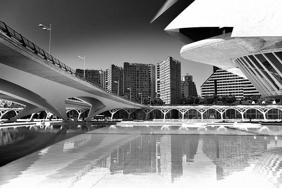Stadtlinien, Valencia (Schwarz-Weiß)