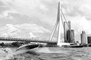 Rotterdam, Haven,  Deloitte kantoor, Erasmusbrug van Henriëtte Hoffs