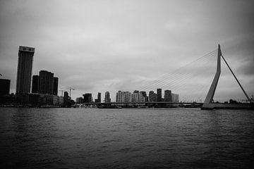 Skyline von Rotterdam mit Erasmusbrücke von Eugenlens