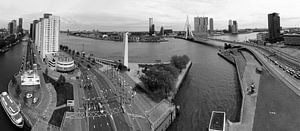 Manhattan aan de Maas Rotterdam Zwart/wit