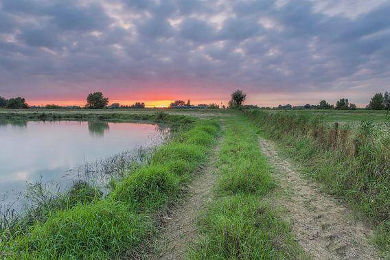 Zonsondergang nabij de Jantjesplaat (Brabantse Biesbosch)