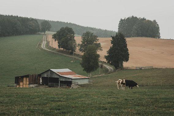 Platteland in België van Paulien van der Werf