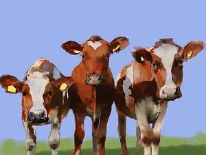 Drei neugierige Kühe.