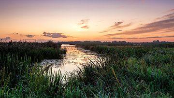 Kleurenspektakel voor zonsopkomst in De Onlanden van R Smallenbroek