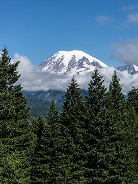 Mount Rainier National Park van MirjamCornelissen - Fotografie