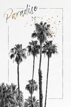 Palm Impression | Paradise van Melanie Viola