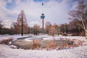 Winter Rotterdam