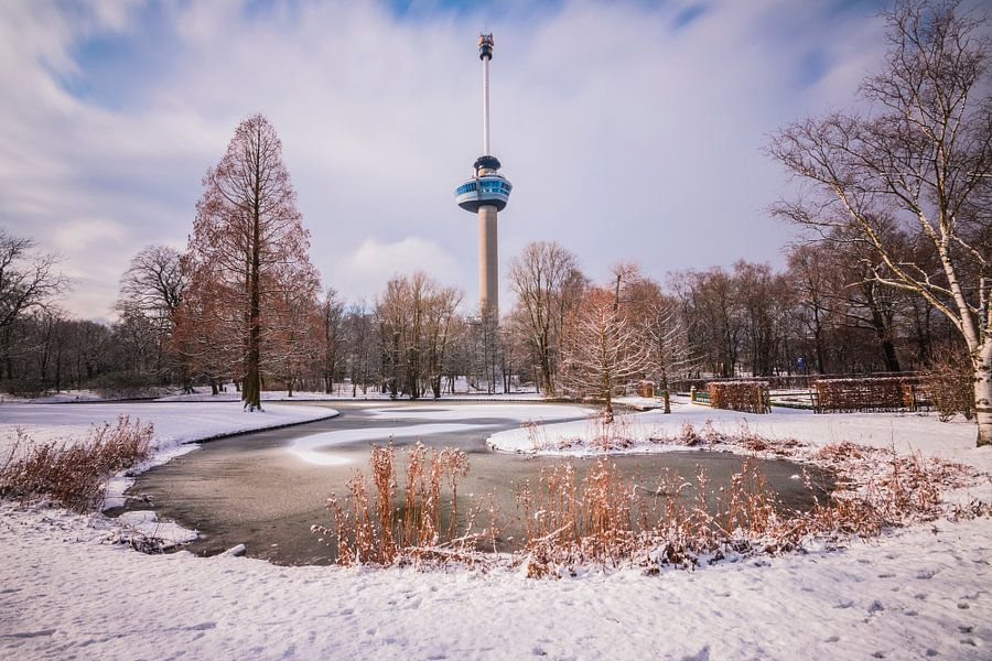 Winter Rotterdam van Dennis Vervoorn