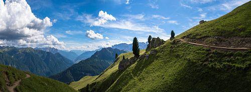 Groen berglandschap van Douwe van Willigen
