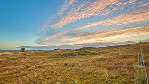 Dünenlandschaft Julianadorp bei Sonnenuntergang von eric van der eijk