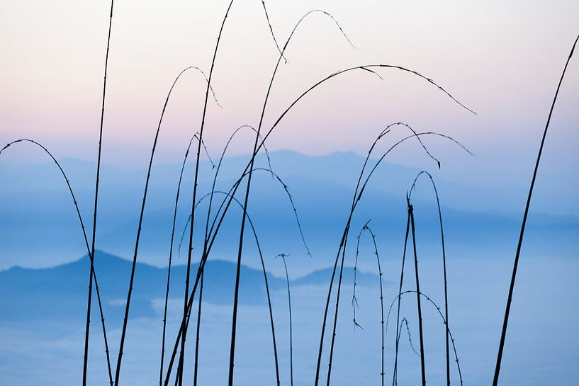 Himalaya view van Hans Kwaspen