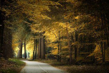 Thinking Of A Place van Kees van Dongen