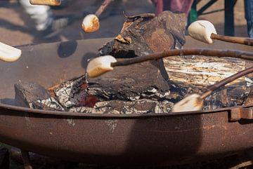 Brood bakken boven kampvuur van Raymond Meerbeek