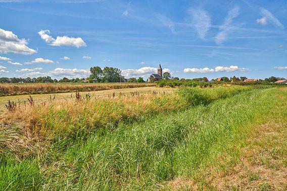 Zomers landschap op Wieringen, Oosterland wieringen