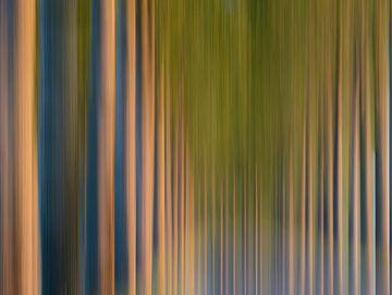 bomen maar dan anders van Tania Perneel