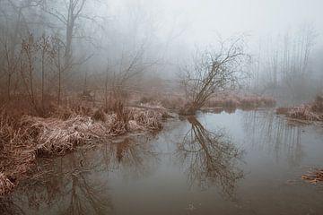 Wasserlandschaft im Nebel von Marlies van Zetten