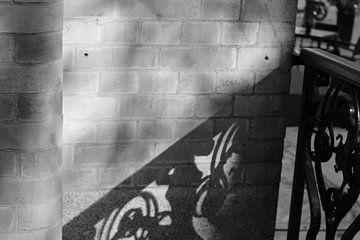 Schaduw hekwerk zwart wit van Vannessa !