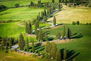 Bochtige weg met cipressen er langs in Toscane