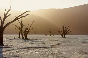 Landschap Zonsopkomst in Deadvlei von Iduna vanwoerkom