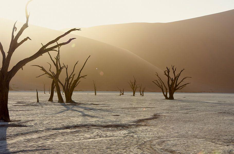 Landschap Zonsopkomst in Deadvlei van Iduna vanwoerkom
