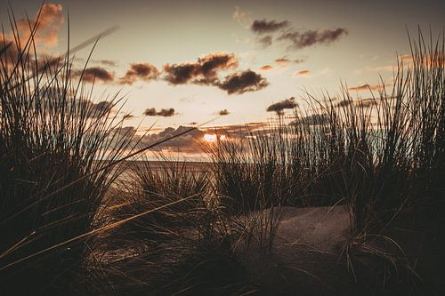 Zonsondergang in de duinen op het strand van Koop je Canvas