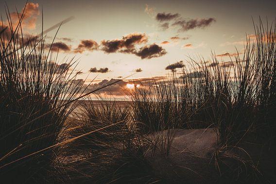 Sonnenuntergang in den Dünen am Strand