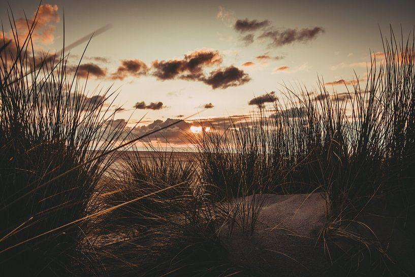 Sonnenuntergang in den Dünen am Strand von Koop je Canvas