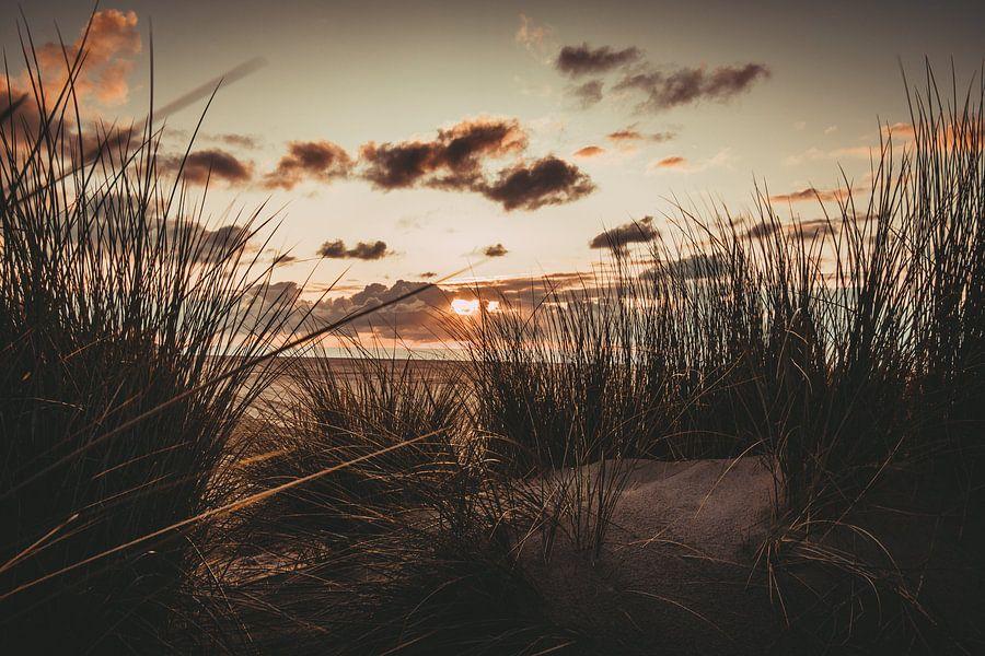Zonsondergang in de duinen op het strand