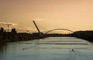 """""""Puente del Alamillo"""" in Sevilla van"""