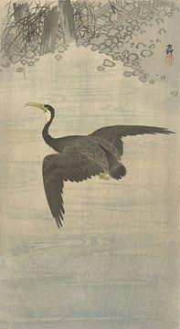 Aalscholver in vlucht van Ohara Koson