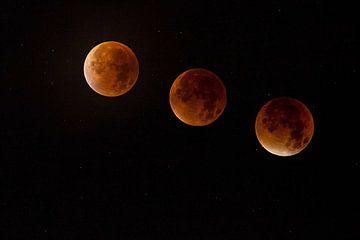 lunar eclipse sur Erwin Stevens