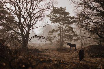 Landschaft mit Pferden von Fardo Dopstra