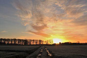 Sonnenaufgang im Polder von Esther Leijten-Kupers