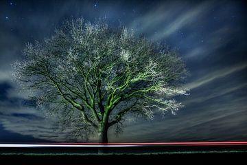 Verlicht.  van Paul Roelofs Fotografie