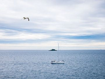 De kust van kroatie met een boot, zeemeeuw en eiland van Déwy de Wit