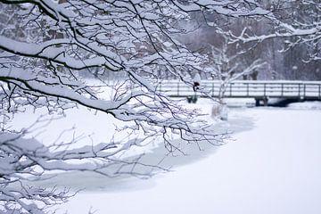 Winter in Leiderdorp van