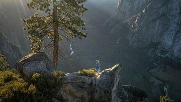Yosemite views van Remco van Adrichem