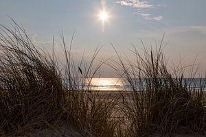 Duin, strand, zon en zee